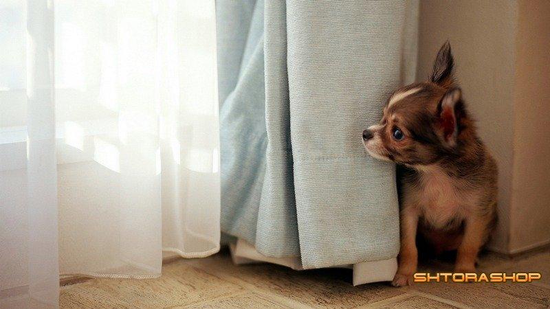 Где купить недорого шторы?